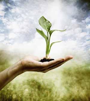 کانال دوستداران محیط زیست