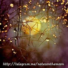 کانال Notes On The Moon