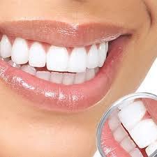 کانال مجله دندانپزشکی