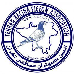 کانال کبوتران مسافتی تهران