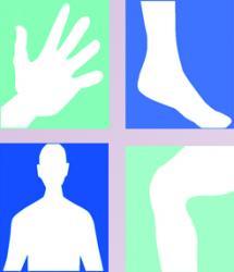 کانال طب فیزیکی-دکتر احمدی