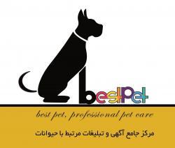 کانال BedtPet