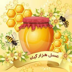کانال خواص عسل