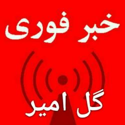 کانال خبر گل امیر