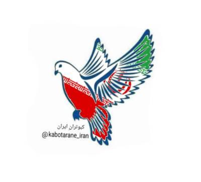 کانال کبوتران ایران