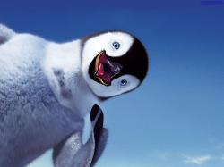 کانال پنگوئن