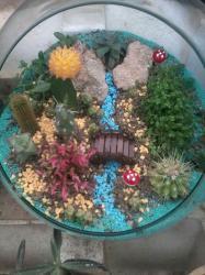 کانال باغ شیشه ای وتراریوم