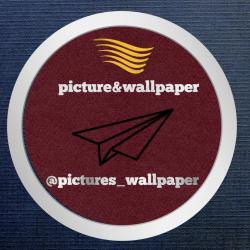 کانال picture&wallpaper