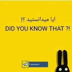 کانال ایا میدانستید !؟
