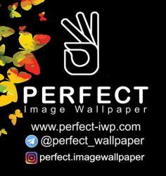 کانال کاغذ دیواری پرفکت