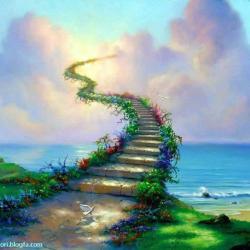 کانال یک پله تا زندگی بهتر