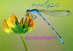 کانال زیست شناسی ایران