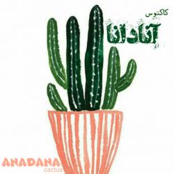 کانال کاکتوس آنادانا