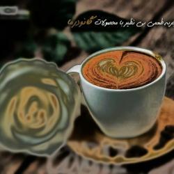 کانال فروش قهوه گانودرما