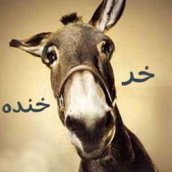 کانال روبیکا طنز خر خنده🐴😂