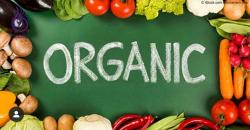 صفحه اینستاگرام محصولات ارگانیک زنبق
