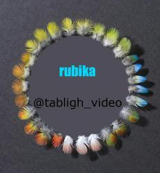 کانال روبیکا ساخت ویدیو تبلیغاتی
