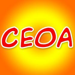 صفحه اینستاگرام CEOAcademy