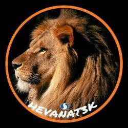 کانال روبیکا علاقمندان حیوانات