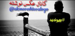 کانال روبیکا عکس نوشته و لوگو