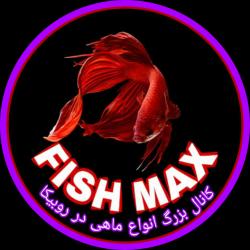 کانال روبیکا FISH MAX(ماهی کامل)