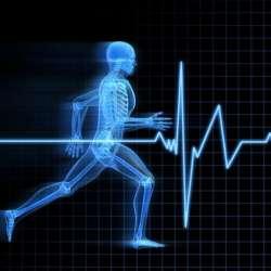 کانال گپ علم و ورزش
