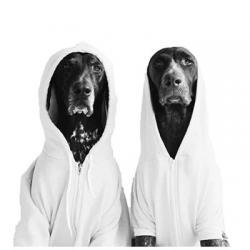 استیکر سگ ها